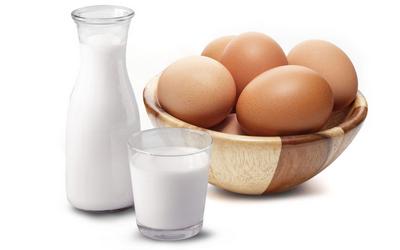 Milchprodukte, Ei, Käse